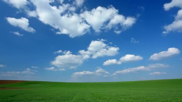 mraky času zanikla na pole