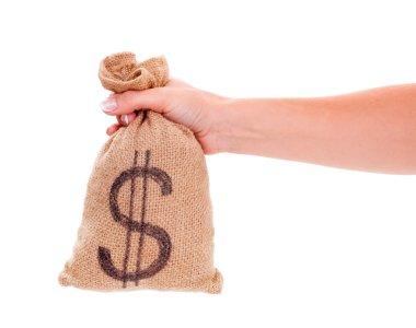 Wealth in bag