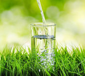 Fotografie Glass of water on nature background