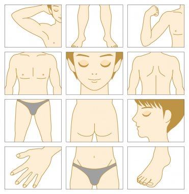 Man body parts