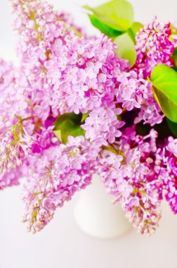 Lilac in the Vase stock vector
