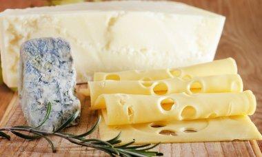 Several varieties of cheese