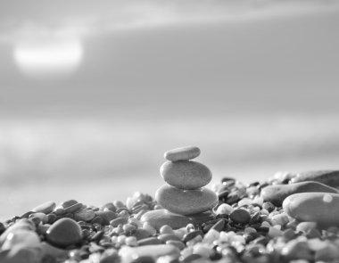 Pebble stones. Black and white photo stock vector