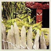Fényképek maori faragás