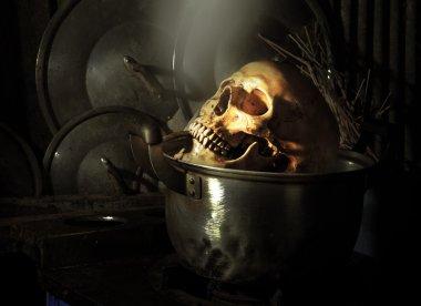 Boiled Skull Skeleton