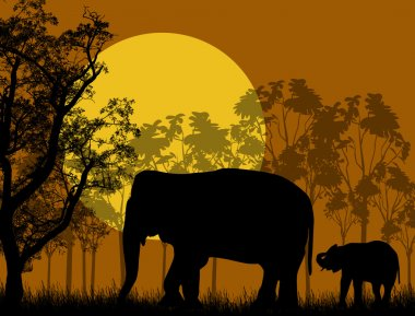 Elephant family in wild african landscape