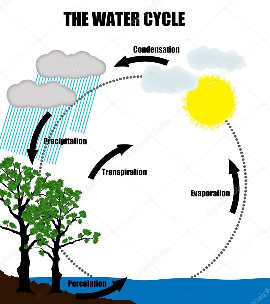 Schematische Darstellung der Wasserkreislauf in der Natur ...