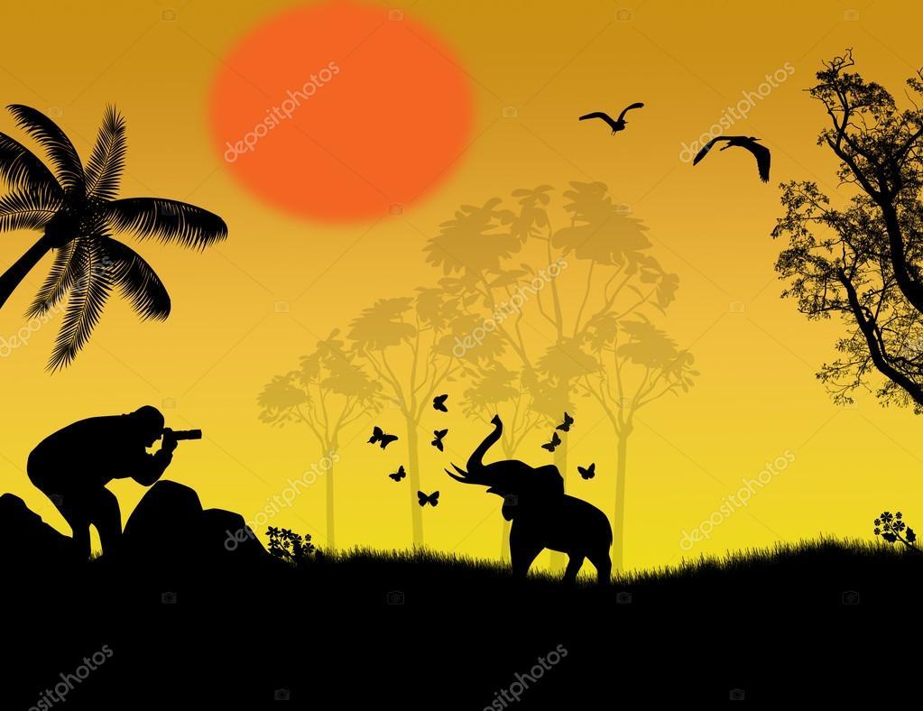Photographer at sunset shoot a baby elephant