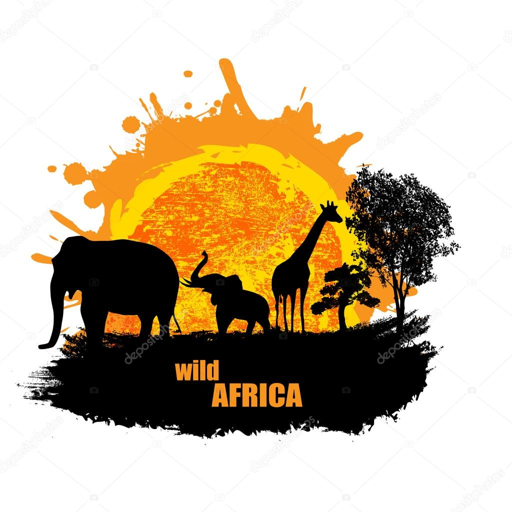 Vector illustration of sunset in wild africa
