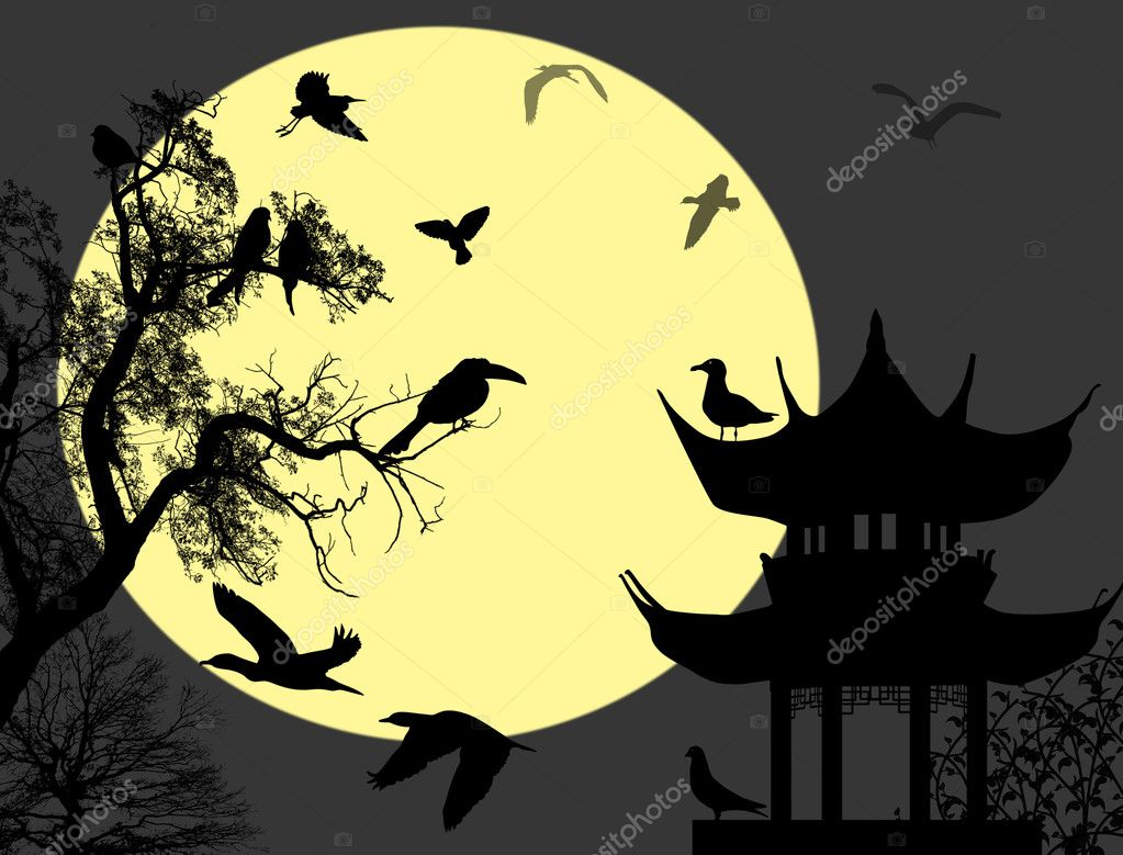 Birds on night landscape