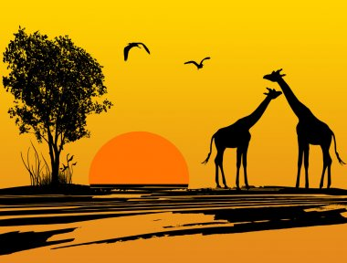 Two giraffes silhouette in Africa