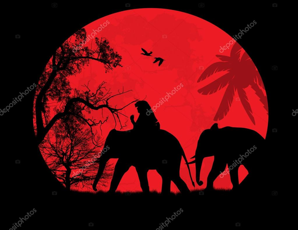 Elephants in Thailand over sunset
