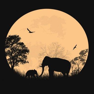African safari theme