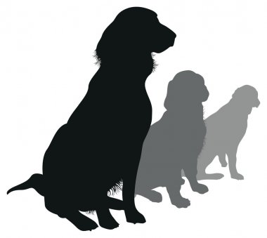 Four dog silhouettes