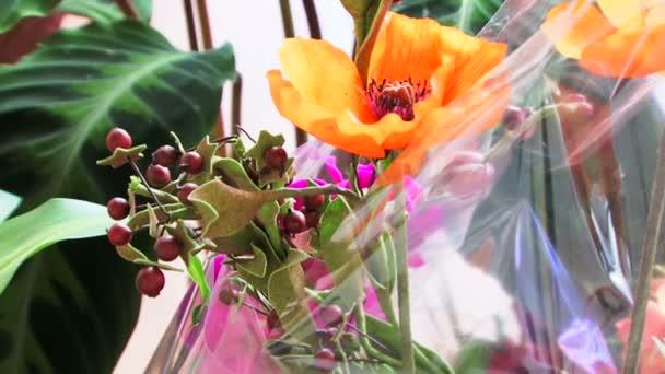 krásná kytice orchidejí v zelené sad