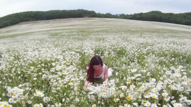 Young girl reading a book. A young girl sits on a beautiful field of chamomile and read more books.