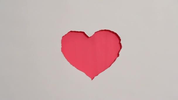 rotes Herz hängt an der Wand. Valentinstag-Thema. hd. Ein rotes Herz hängt an der Wand und zwei Pfeilspitzen kommen hinein. Nahaufnahme. weißer Hintergrund.