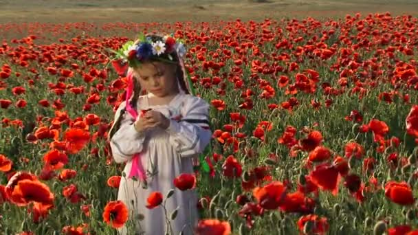 Ukrainian girl in a field among blossoming poppies. Among blossoming poppies.