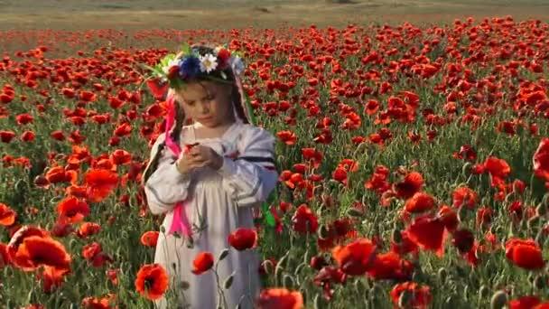 Ukrajinská dívka v oblasti mezi kvetoucí mák. mezi kvetoucí mák