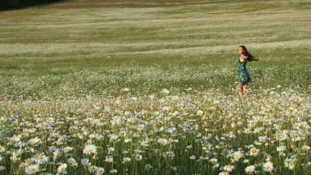 Joyful woman among blooming daisies. Summer in a village.
