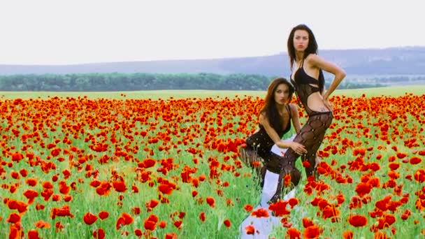 Fashion models posing for cameras in countryside. Fashion models.