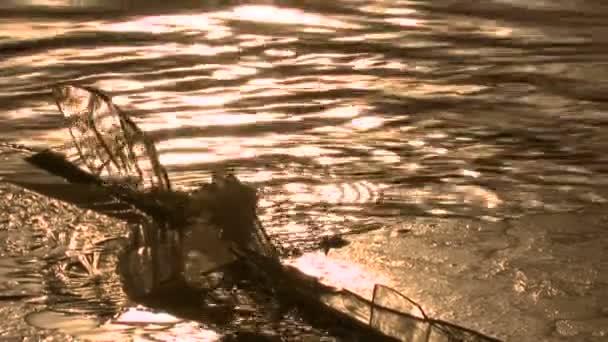 LED postavu na zamrzlém jezeře. ledový obrázek