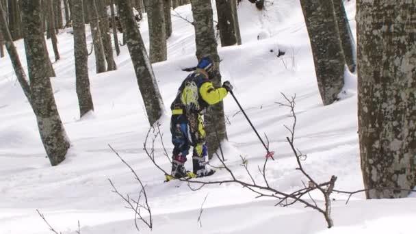 chlapec, naučit se lyžovat.