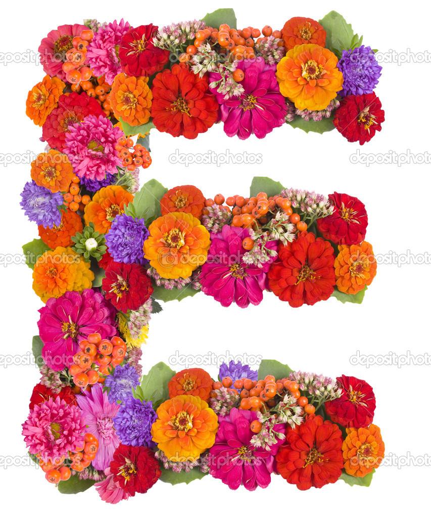 E Flower Alphabet Isolated On White Stock Photo Byelikova 12882544