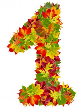 number 1 made from autumn leaves, isolated on white