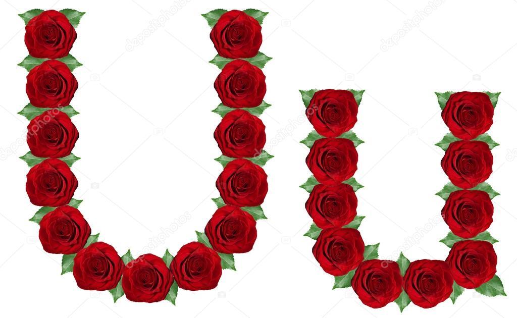 alfabeto de rosas rojas y hojas verdes — Fotos de Stock © Byelikova ...