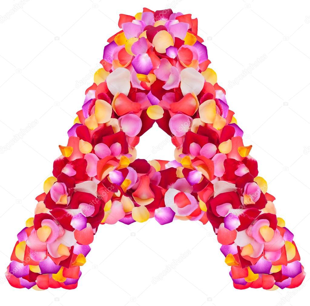 carta con un hecho de pétalos color de rosa — Foto de stock ...