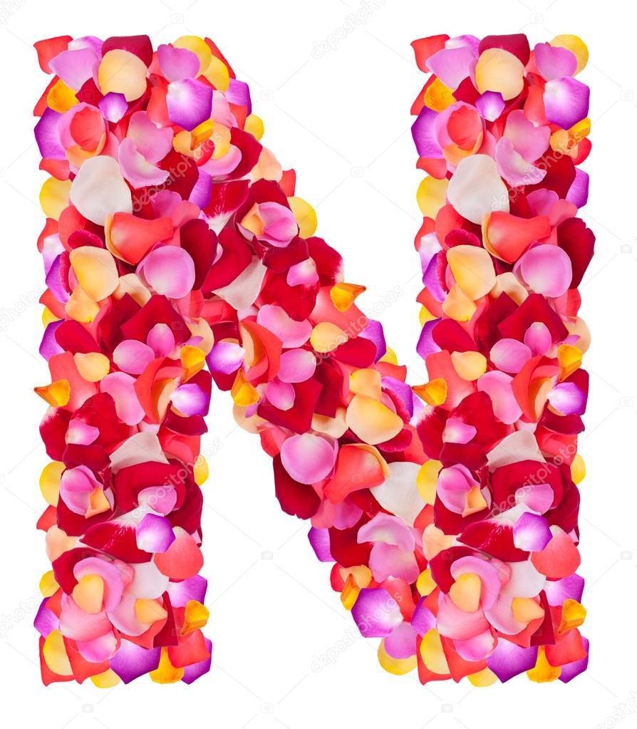 Letra n de coloridos pétalos color de rosa — Fotos de Stock ...