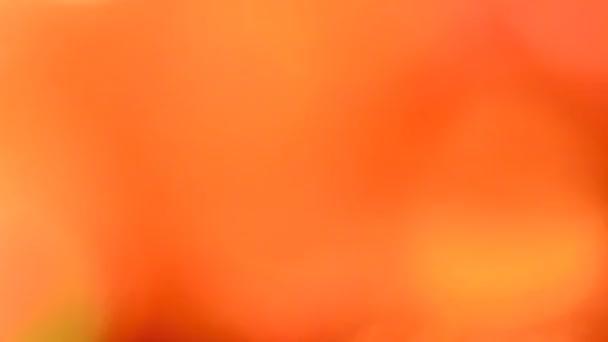 abstraktní zářící multi barva textury