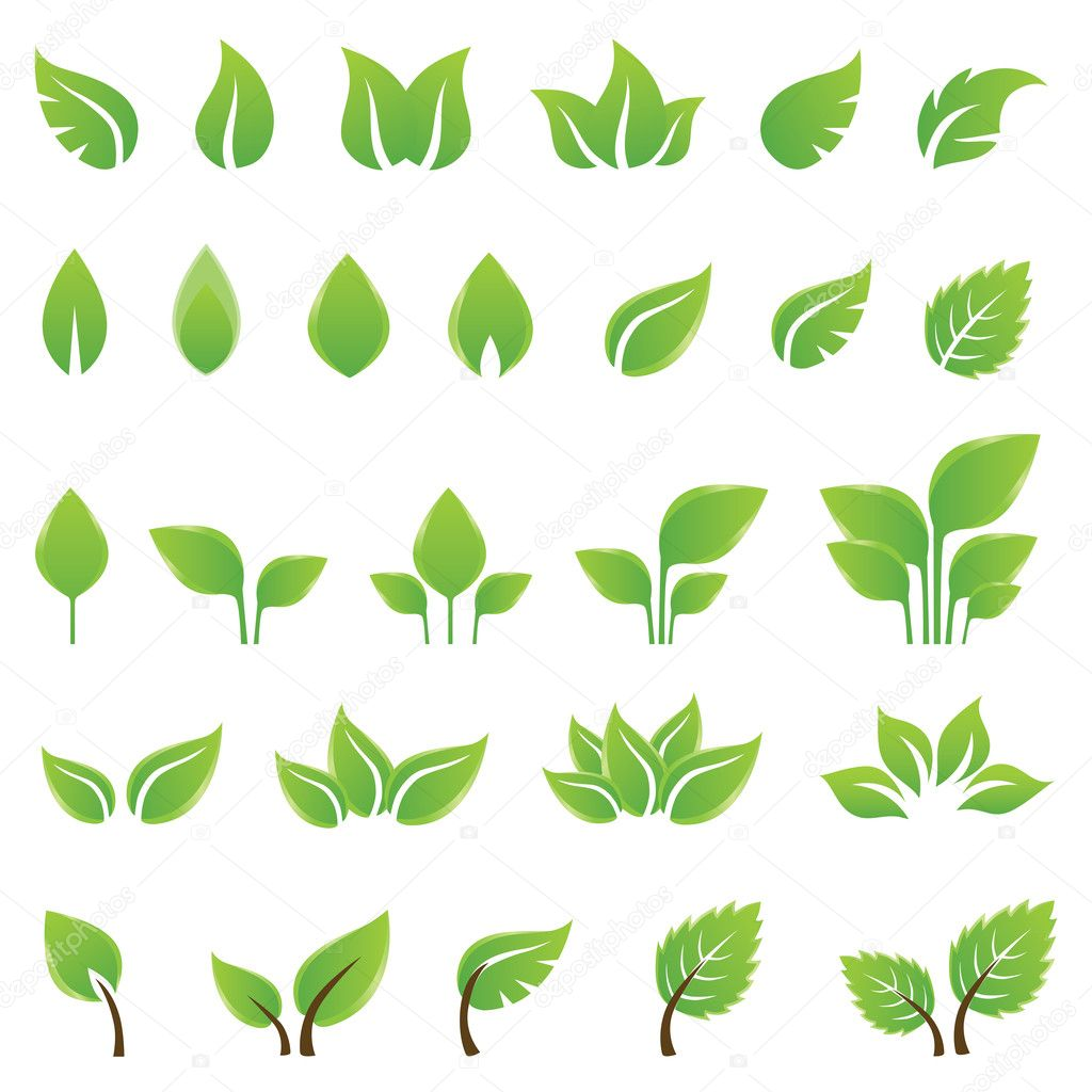 Set of green leaves design elements