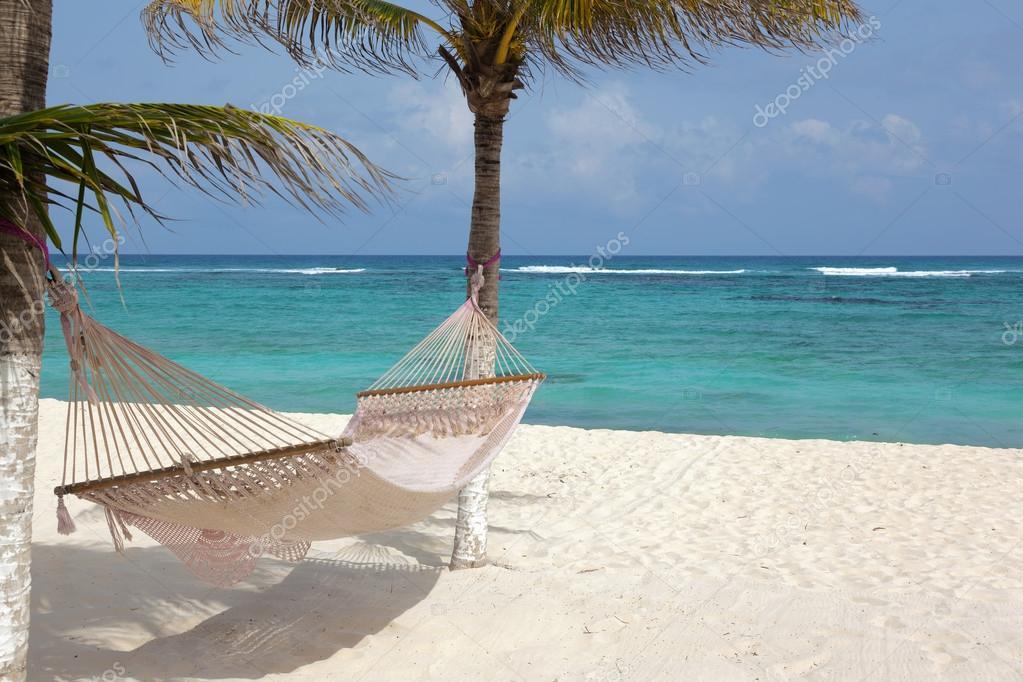 Playa con cocoteros y hamaca foto de stock cristovao for Hamaca plegable playa