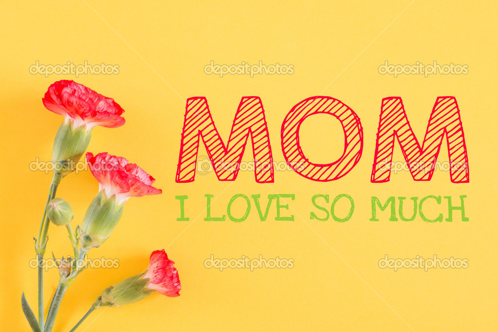 I Love You So Much Mom Stock Photo Roobcio 42400281