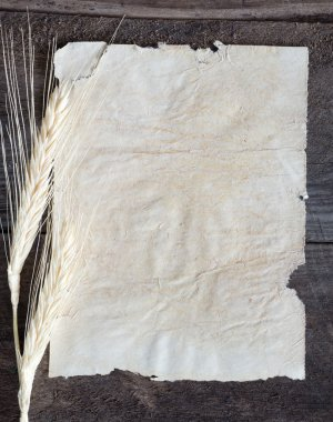 Old paper with wheat