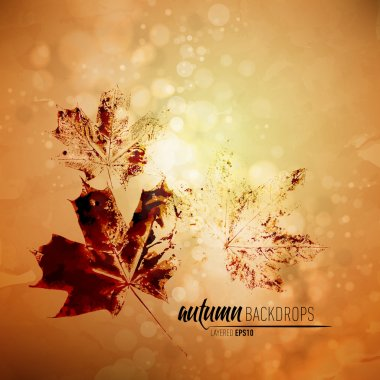 Autumn Background with Nature Printing of Fallen Leaves