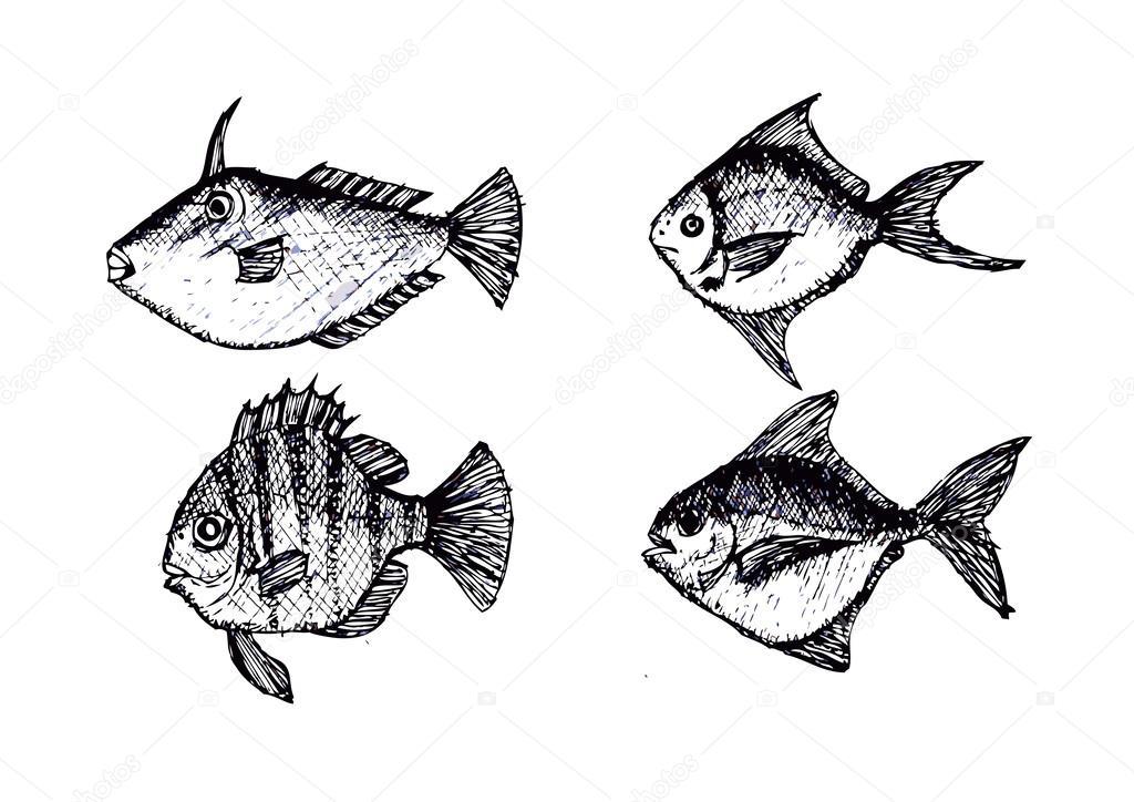 Hand gezeichneten Fisch-Vektor-illustration — Stockvektor © porjai ...