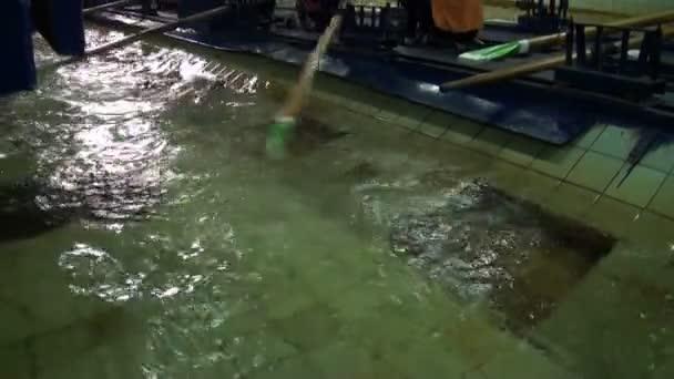 Simulator Kanu Rudern