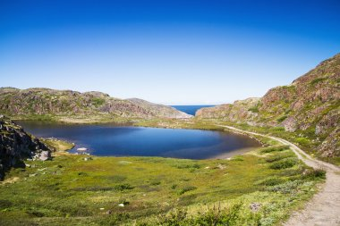 Mountain lake in the North. Moss-covered hills, and stunted vege