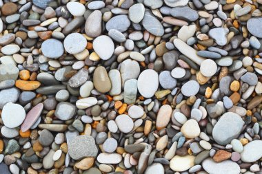 Sea stones shells background