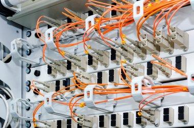 Focus on fiber optic cables