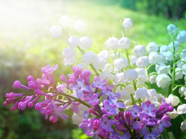Lilly of the Valley and spring lilac flowers bouquet