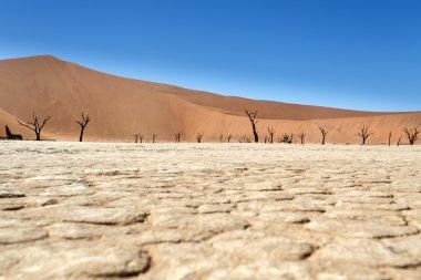 ölü vlei - sossusvlei, Namibya