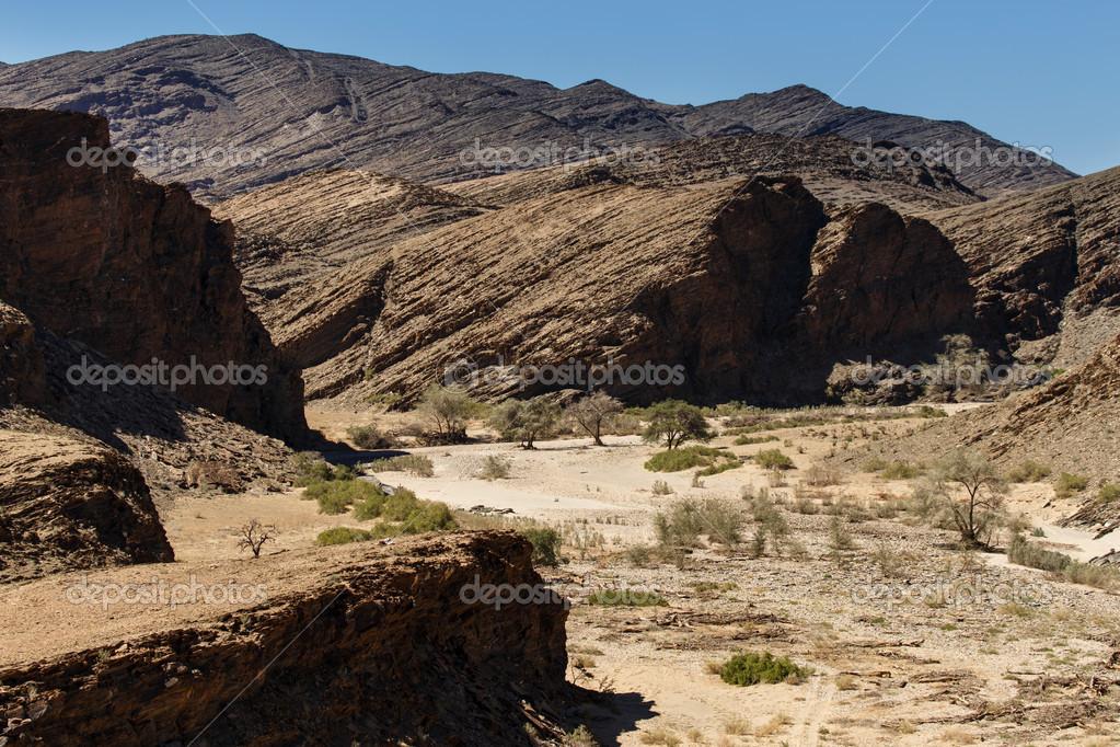 Dry River in Sossusvlei, Namibia