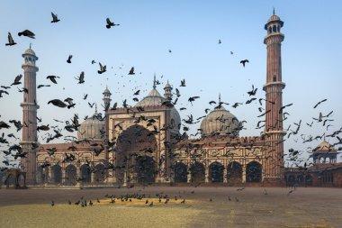 The mosque Jama Masjid in Delhi