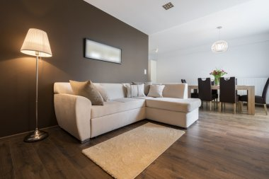 Modern interior design apartment