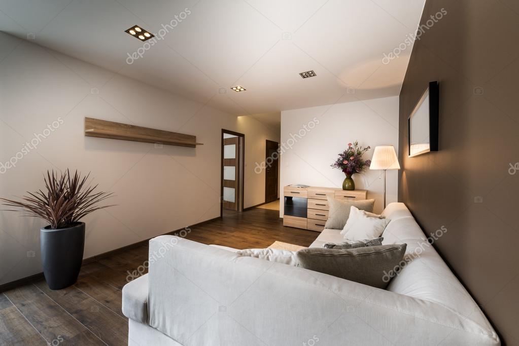 moderne woonkamer in bronzen kleur — Stockfoto © jacek_kadaj #43904017