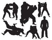 Photo Judo vector